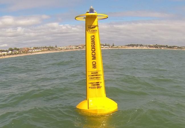 Shark Monitoring Network