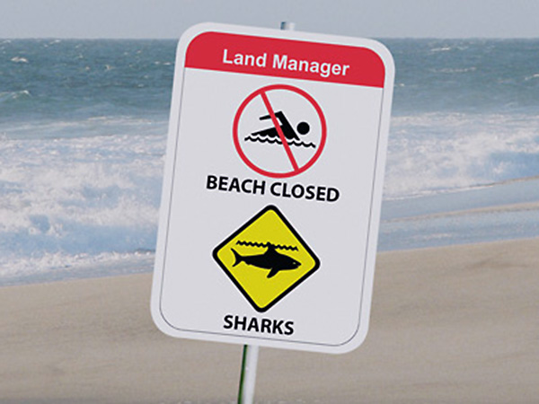 Shark Incidents & Serious Threat